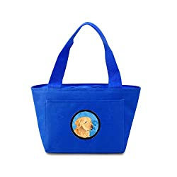 Carolines Treasures SS4752-BU Golden Retriever Lunch or Doggie Bag, Large, Blue