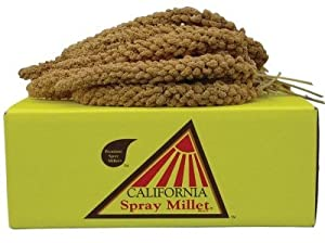 GOLDEN FARMS PRODUCTS 250200 California Spray Millet for Pets, 5-Pound