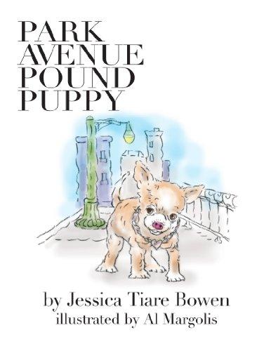 park-avenue-pound-puppy