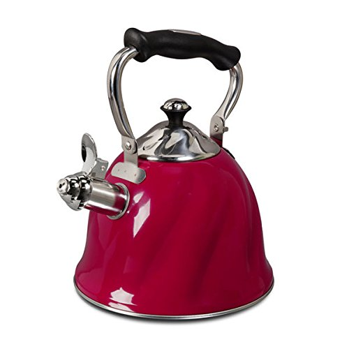 Mr Cofee Alderton Stainless Whistling 2.3 quart Tea/Coffee Kettle (Ellipse Tea Kettle compare prices)