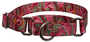 Country Brook Design® Pink Paisley Martingale Dog Collar-Large