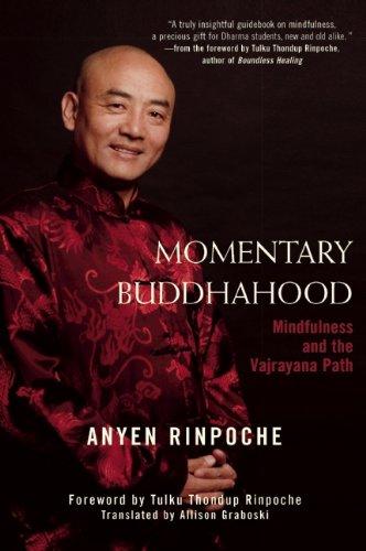 Momentary Buddhahood: Mindfulness and the Vajrayana Path, Anyen Rinpoche