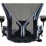 Aeron Chair PostureFit Support Kit by Herman Miller - Graphite Size C