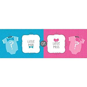 Bow or Bowtie? Giant Party Banner Little Man or Miss Gender Reveal Shower by Creative Converting