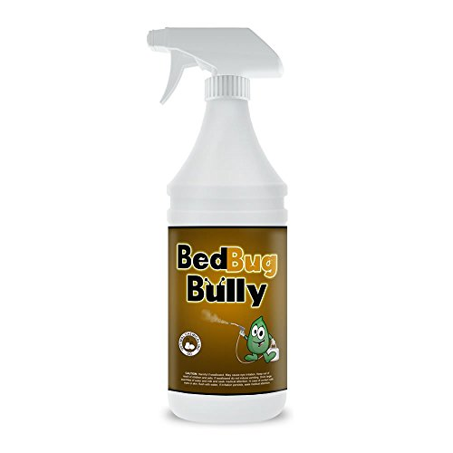 Bug Spray Used By Professionals - Child Safe & Pet Safe