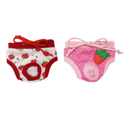 Alfie Pet Apparel - Torri Diaper Dog Sanitary Pantie 2-Piece Set - Colors: Pink And Red, Size: L (For Girl Dogs) front-915717