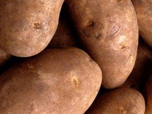 Gem State Potato Flour