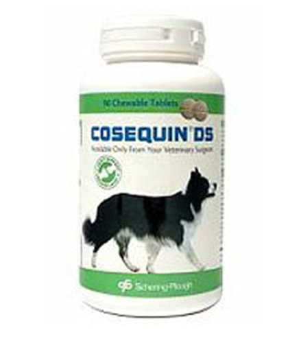 Cosequin Large Breed Double Strength 120 Chew Tablets