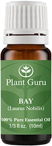 Bay Essential Oil. (Laurus nobilis) 10 ml. 100% Pure, Undiluted, Therapeutic Grade.