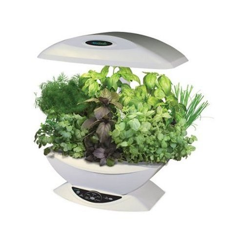 Indoor Hydroponics Garden System