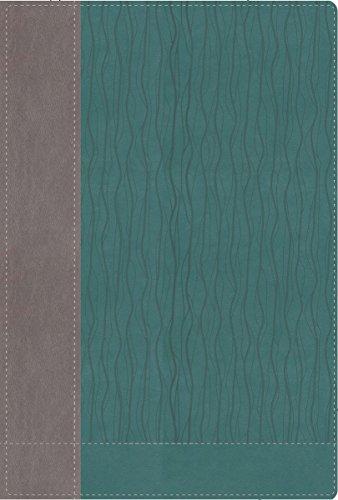 faithlife-study-bible-new-international-version-gray-blue-leathersoft-ribbon-marker-intriguing-insig