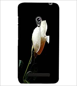 PrintDhaba White Rose D-2002 Back Case Cover for ASUS ZENFONE 5 A501CG (Multi-Coloured)