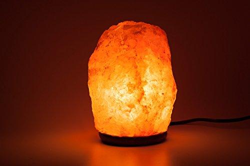 HemingWeigh Natural Himalayan Salt Lamp Hand Carved With Genuine ...