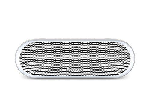 소니 XB20 포터블 블루투스 스피커 Sony SRSXB2/BLK-B01N5V0FVK,Grey