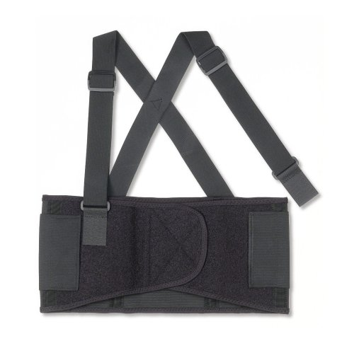 ProFlex 1650 Economy Elastic Back Support Belt,