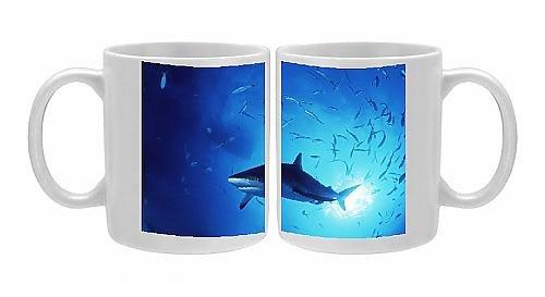 Photo Mug Of Grey Reef Shark front-579571