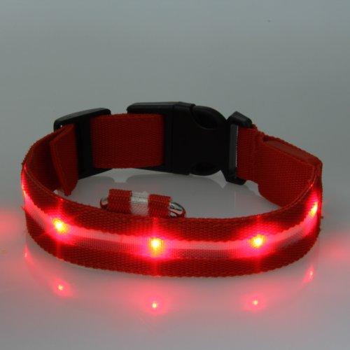 Dog Collar Led Flashing Lights Lightweight (Red, Large)