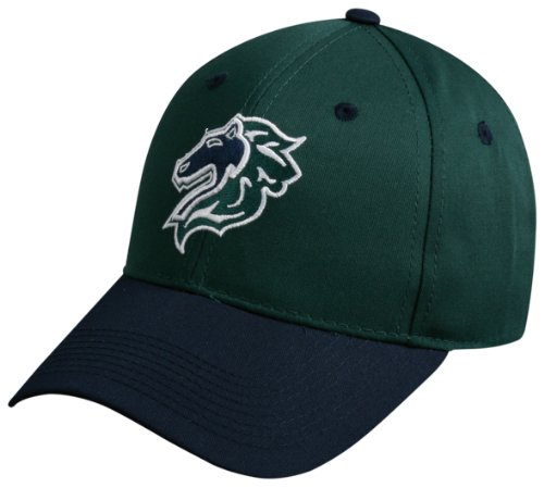 MiLB Minor League YOUTH Charlotte KNIGHTS Hat Cap ...