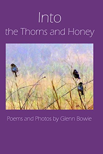 Into the Thorns and Honey: Poetry and Photographs