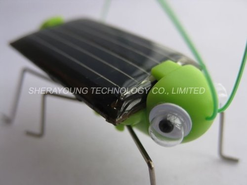 Neewer Adorable Solar Power Robot Insect Bug