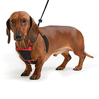 YUP! Nylon Non Pulling Dog Harness, Small, Red