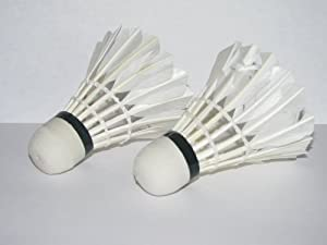 LED Light-Up Badminton Birdies (Set of 2) Shuttlecocks Shuttlecock Feather Badmiton