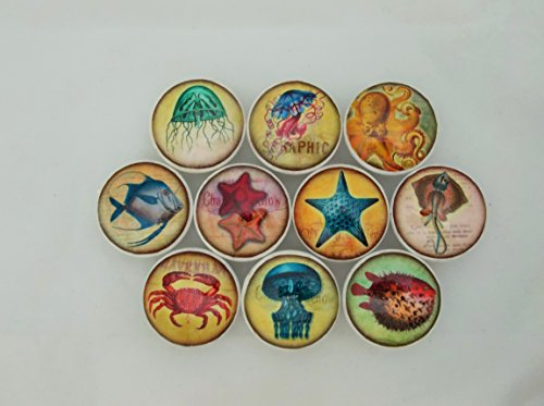 Set of 10 Colorful Sealife Cabinet Knobs (Sea Life Knobs compare prices)