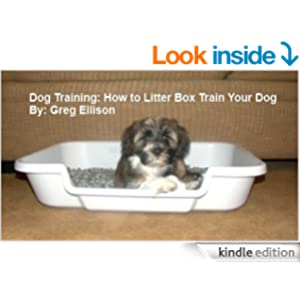 how to litter box train