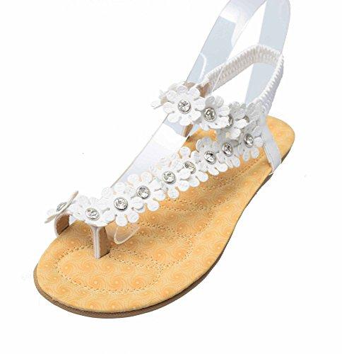 6d3da88ff8a2 Forever Calista-68 Elegant Women s Sweet Fashion Flip Flops Hawaiian Flowers  Beads Gladiator Flat Sandals