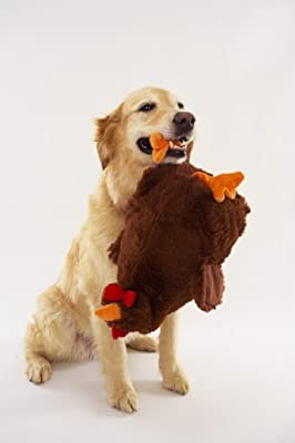 Chicken Milk Jug Dog Toy
