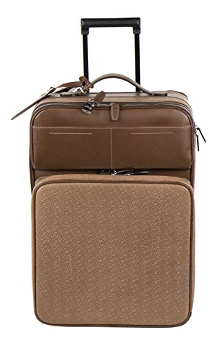 brioni-brown-leather-trolley-rolling-suitcase-bag