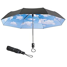 umbrella with blue sky printed on this inside
