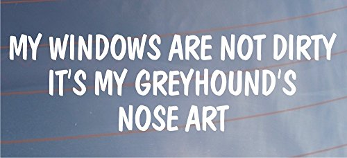 my-windows-are-not-dirty-its-my-greyhounds-nose-art-funny-car-van-dog-sticker