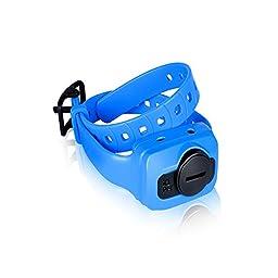 iQ CLiQ Additional Receiver Collar for Dogtra iQ CLiQ Remote Trainer (Blue)