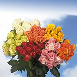 Flower Birthday Party | 100 Best Roses Assorted Colors | Four Different Colors