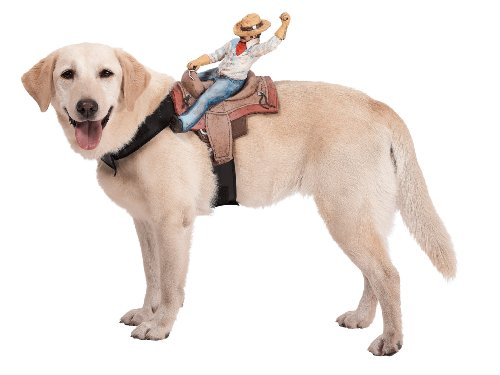 Harness with Cowboy Rider Pet Costume