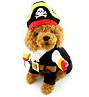 PEGASUS Pet Cat Dog under 20 pounds Small Dog Pirate Costume Coat with Adjustable Hat