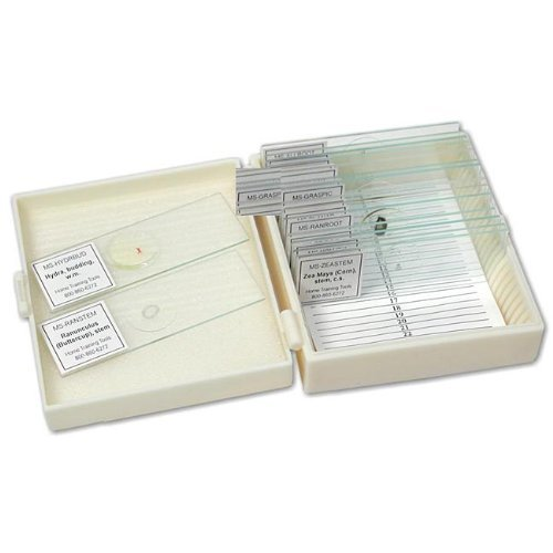 Walter Products 84113 Apologia Biology Slide Set Of 16