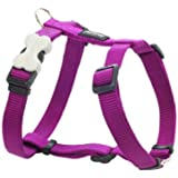 Red Dingo Dog Harness, Medium, Purple