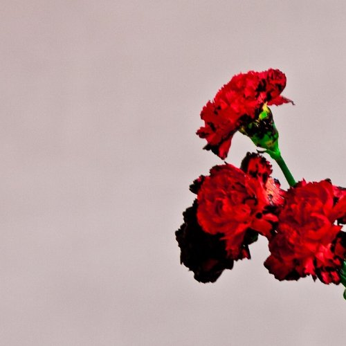 John Legend-Love In The Future-JP Deluxe Edition-CD-FLAC-2013-PERFECT Download