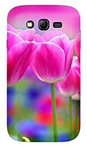 WOW Printed Designer Mobile Case Back Cover For Samsung Galaxy Grand Duos I9082 / Galaxy Grand Neo GT-I9060 / Galaxy Grand Neo Plus I9060IVER