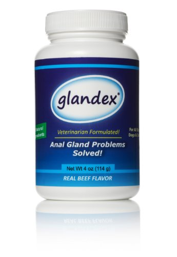 Glandex® - Anal Gland Fiber Supplement for Dogs & Cats (4 oz.) - incense101.net