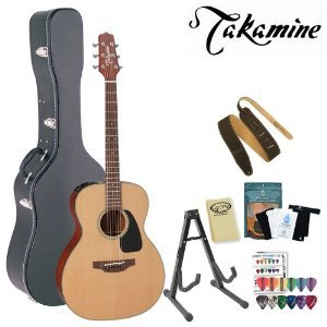 Takamine P1M Pro Series Acoustic-Electric Guitar With Stand, Humidifier Pack, Suede Strap, Hard Case And Pick Sampler