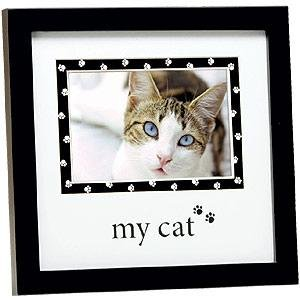 MY CAT Faithful Friend frame by Prinz