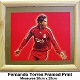 Liverpool FC Torres Print