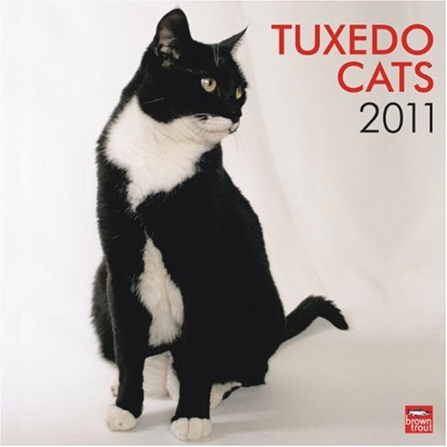 Tuxedo Cats 2011 Square 12X12 Wall Calendar (Multilingual Edition)