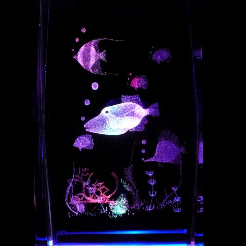 Tropical Fish S1 3D Laser Etched Crystal + Rotating Display Light Base With 7 Multi Color Led'S