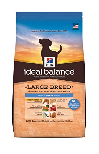 Hill'S Ideal Balance Large Breed Natural Chicken & Brown Rice Recipe Puppy Dry Dog Food, 4-Pound