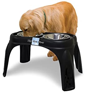 OurPets Right Height Café Dog Feeder, 16-inches High