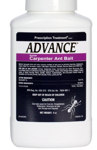 Advance Carpenter Ant Bait-8 oz 669578